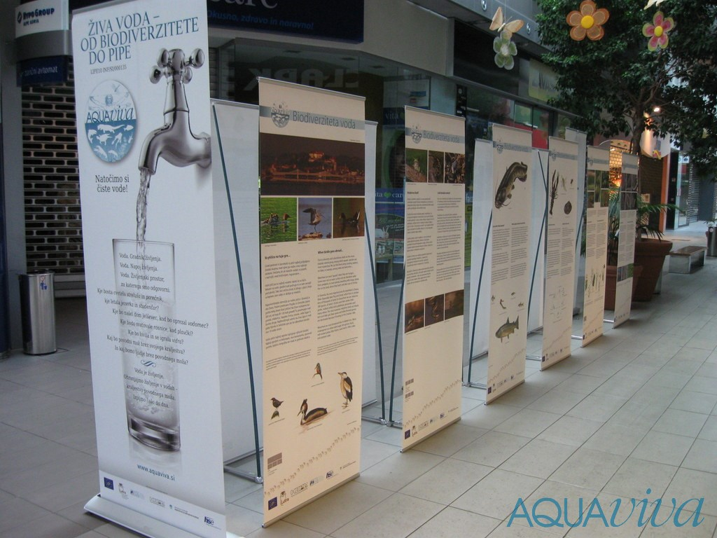 Inland Waters Biodiversity Exhibition